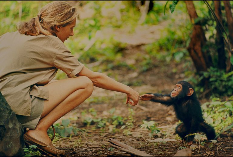 Jane holding hands with a monkey