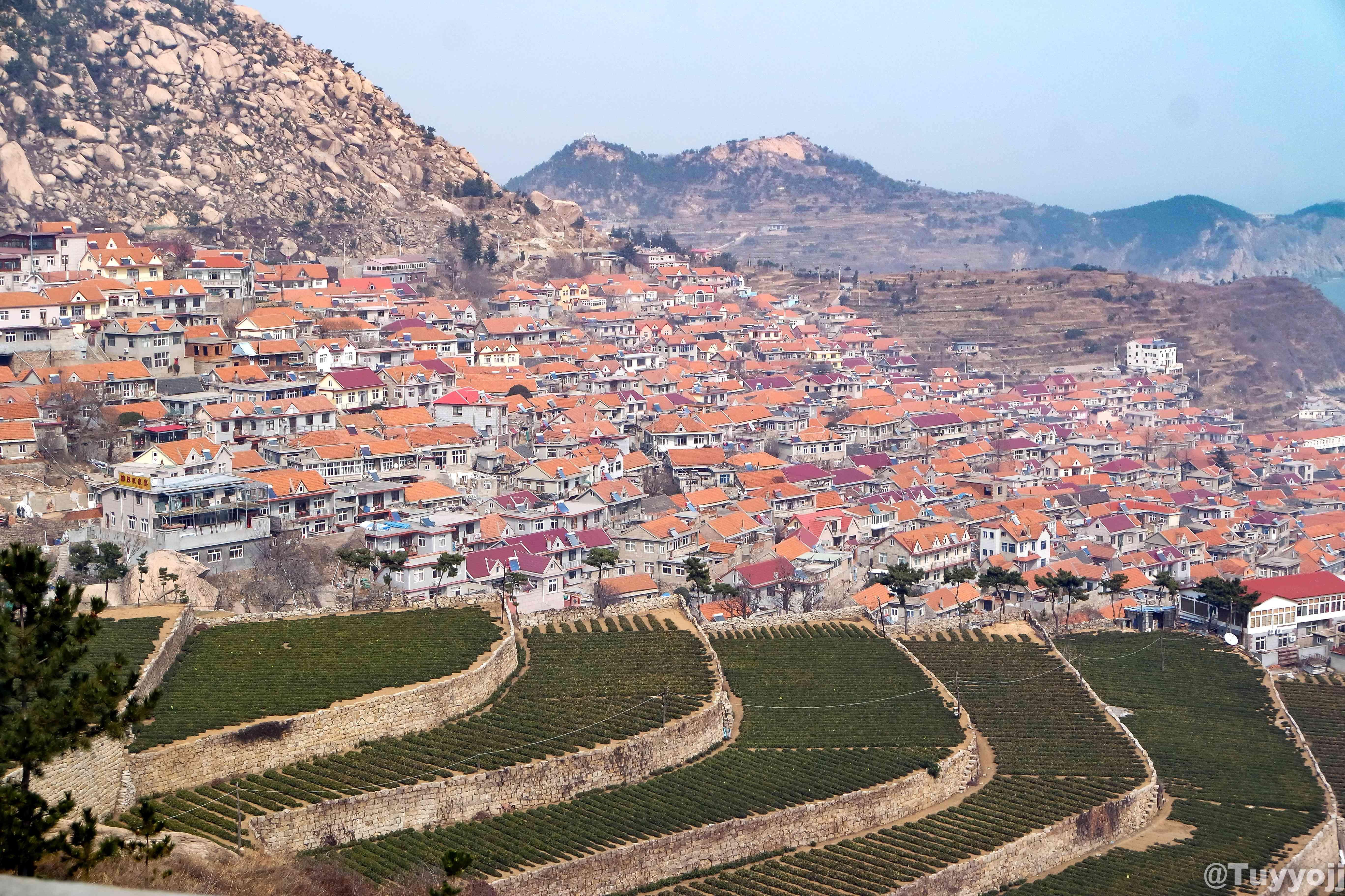 Terraced fields and a Chinese city against the mountains in Shandong