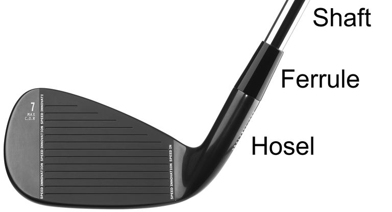 Illustration showing the hosel and ferrule on a golf iron head.