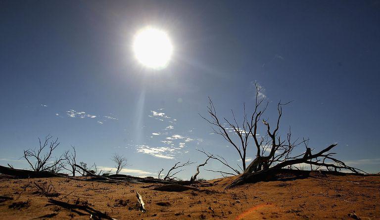 Arid desert landscape in Australian Outback