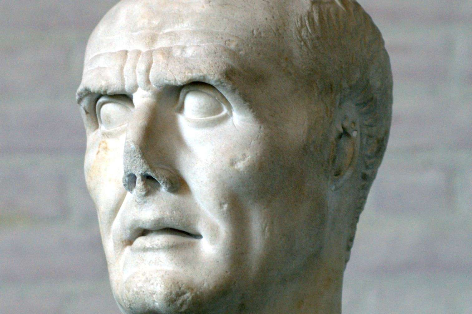 A white stone bust of Marius features a cropped nose