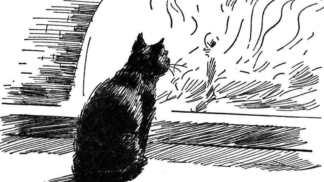 The Black Cat'—Plot, Symbols, Themes, and Key Quotes