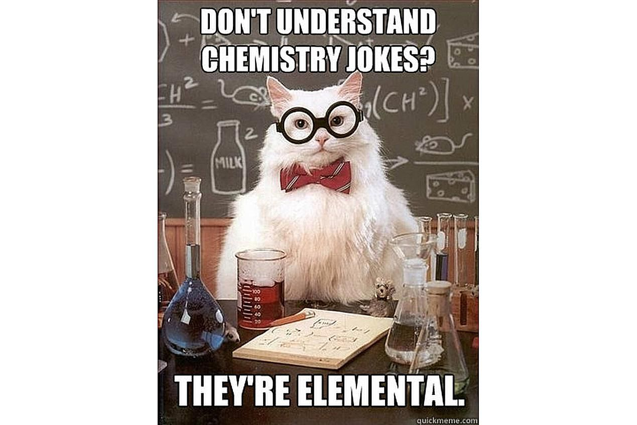 Chemistry Cat thinks chemistry jokes are pretty elemental.