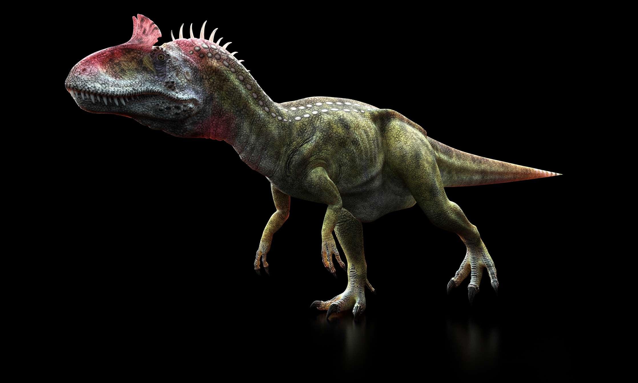 Cryolophosaurus illustration