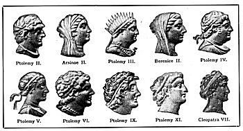 Pictures of the Ptolemies