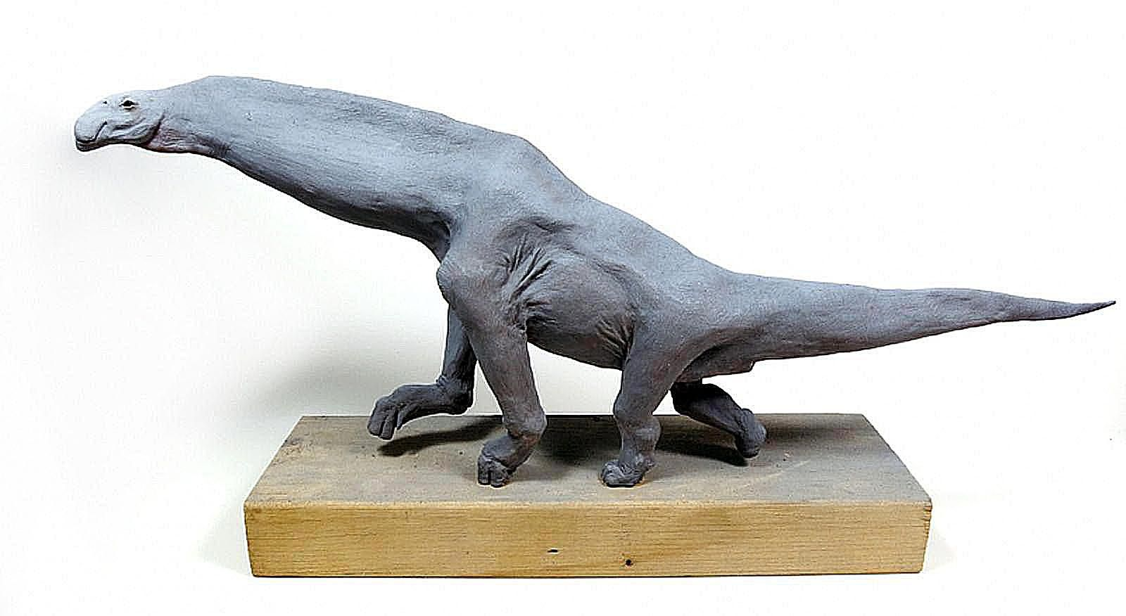 jainosaurus