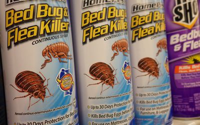 How To Use A Bug Bomb Safely