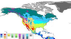 North America Köppen Map