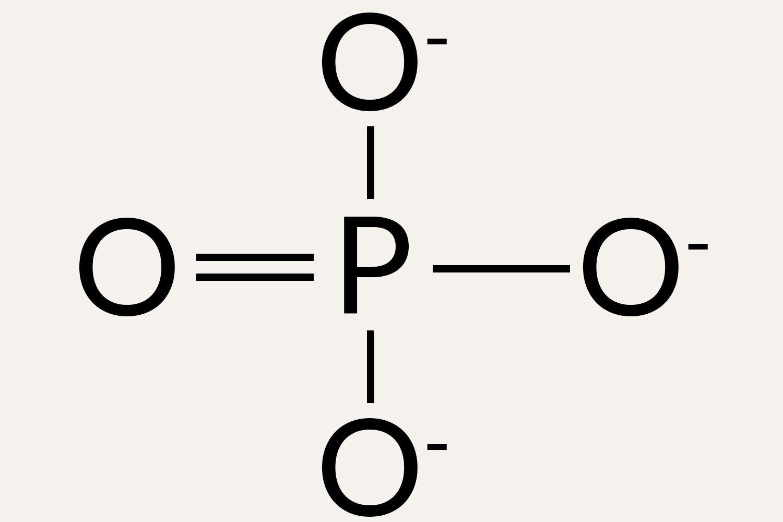 Phosphate anion