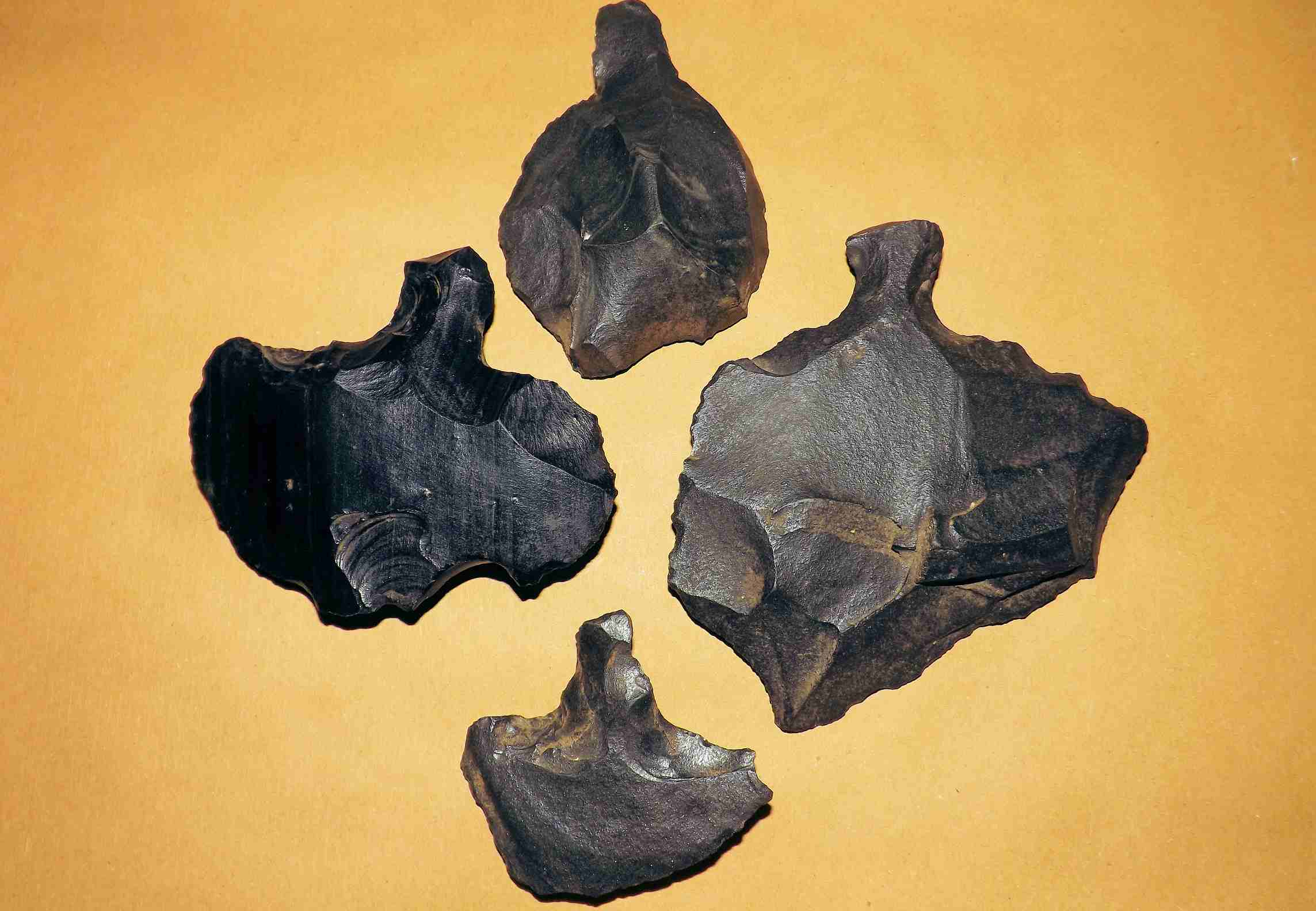 Obsidian spear points on a yellow background.