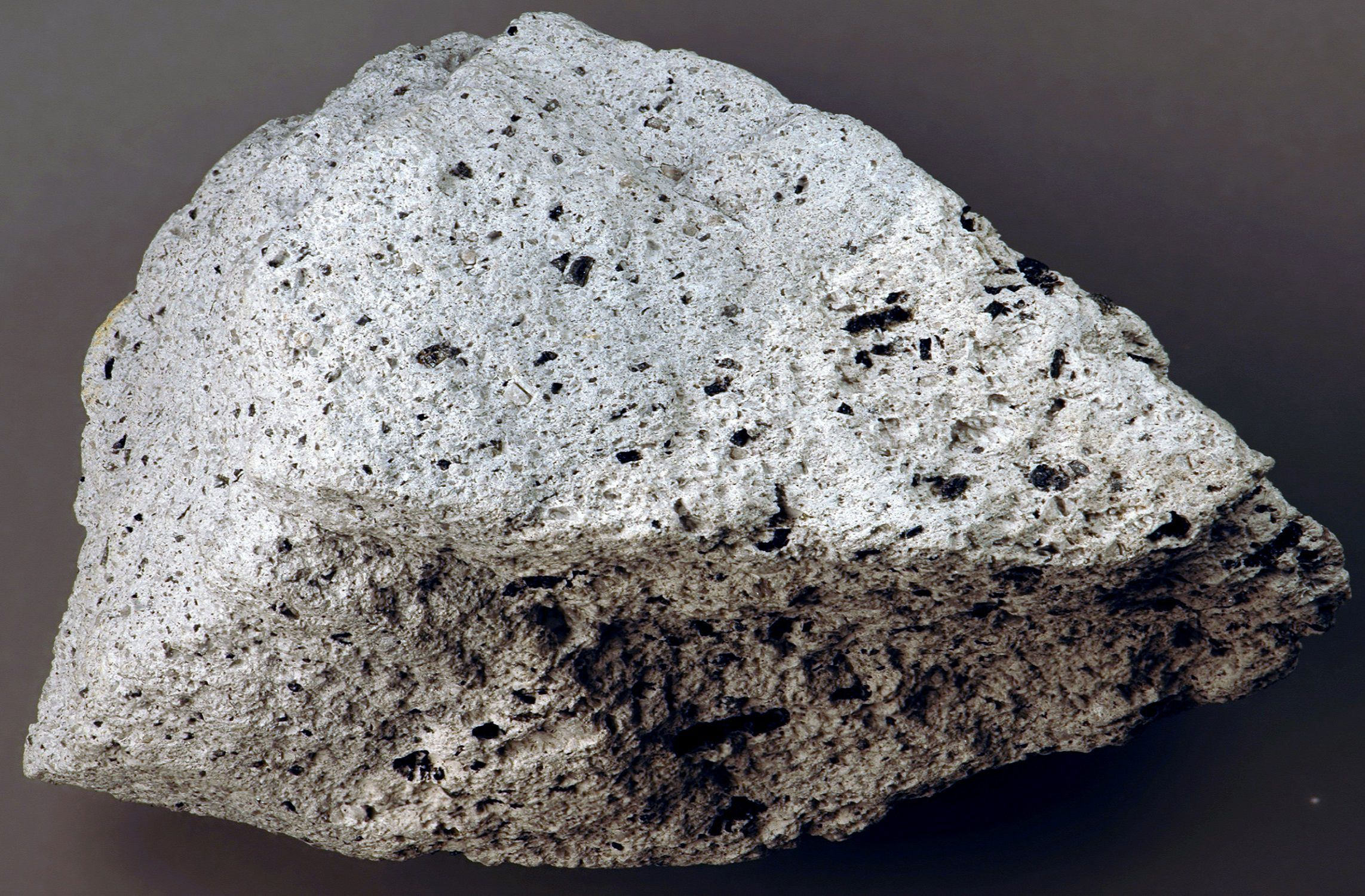 Large piece of andesite rock on a gray background.