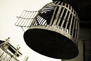 Empty birdcage with open door