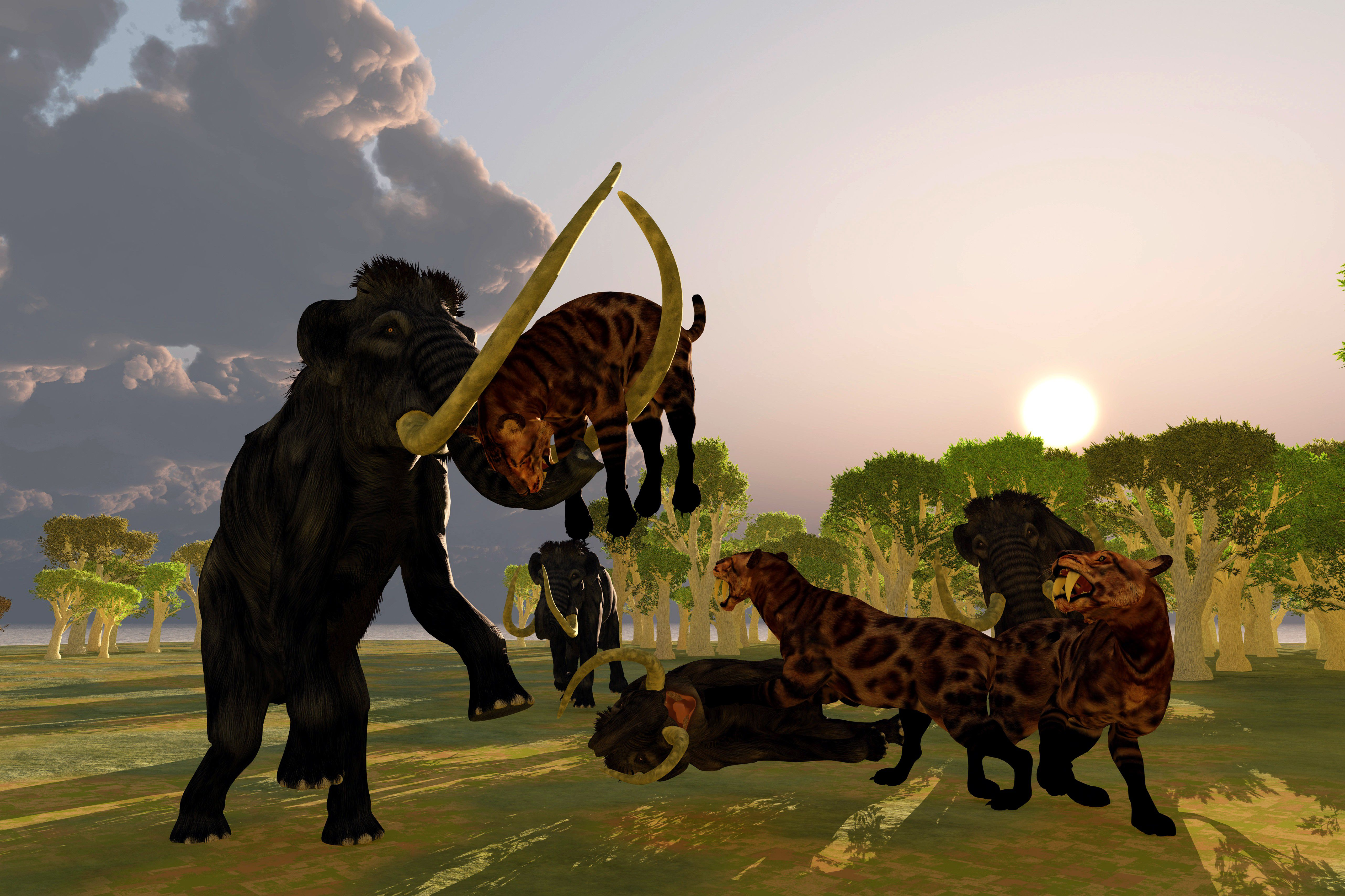 An artistic rendering of a pack of smilodons taking on a herd of mammoths