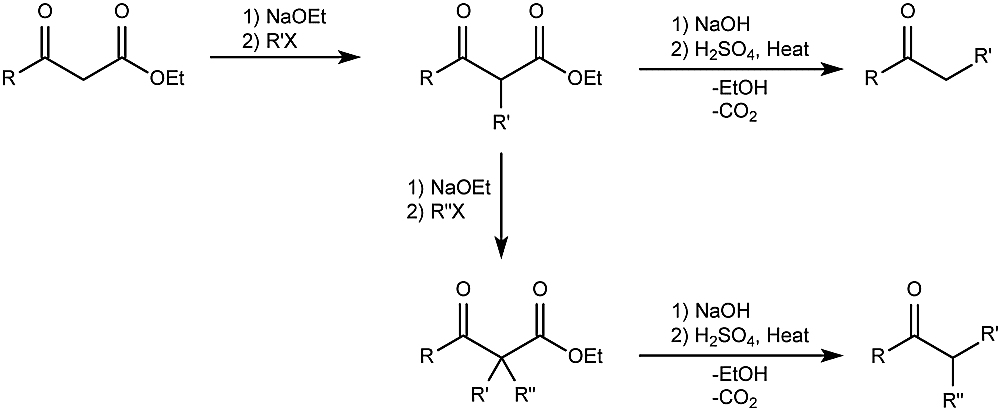 This is the general form of the acetoacetic ester synthesis reaction.