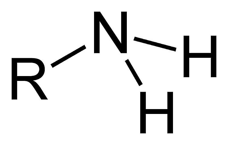 A primary amine is one of the amine functional groups.