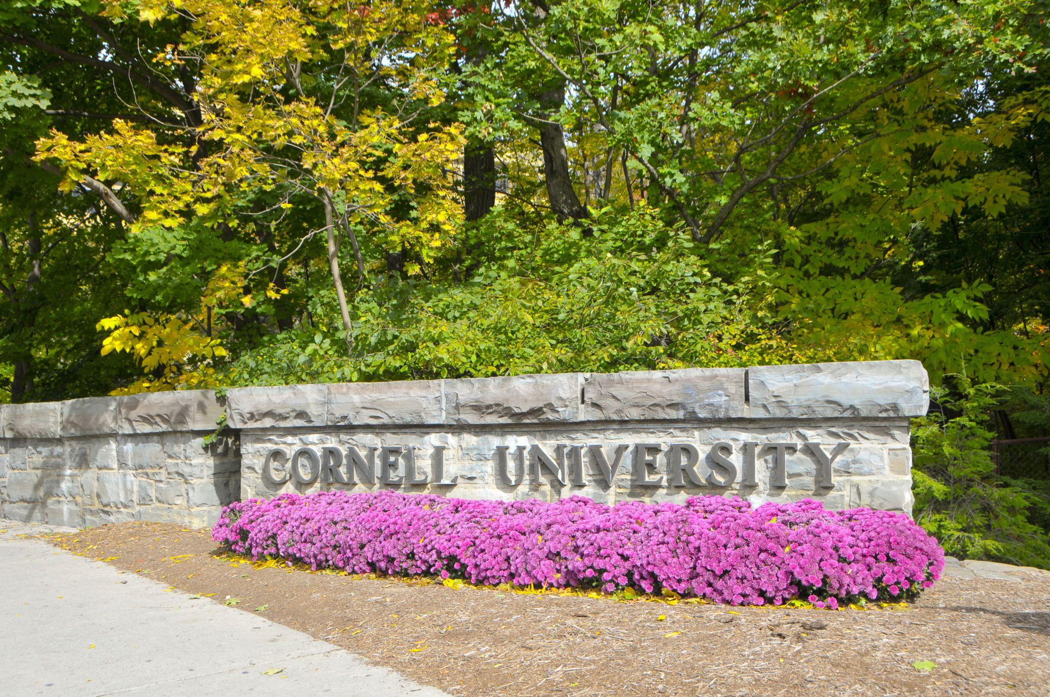 De las Ivy League, Cornell es la que tiene el mejor programa de ingeniería.