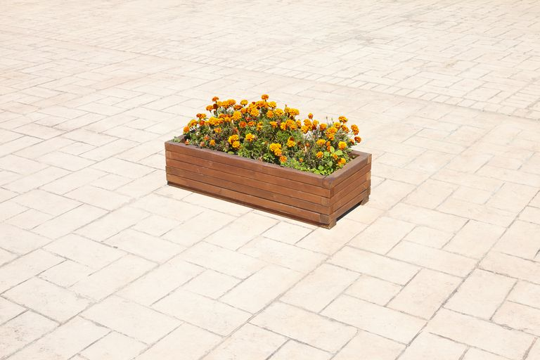 Flower box on bricked pavement