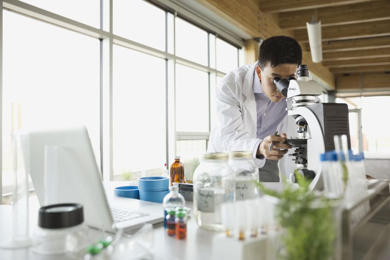 Botanist looking through microscope