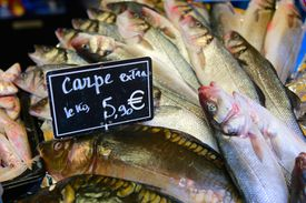 Fish for sale in French market