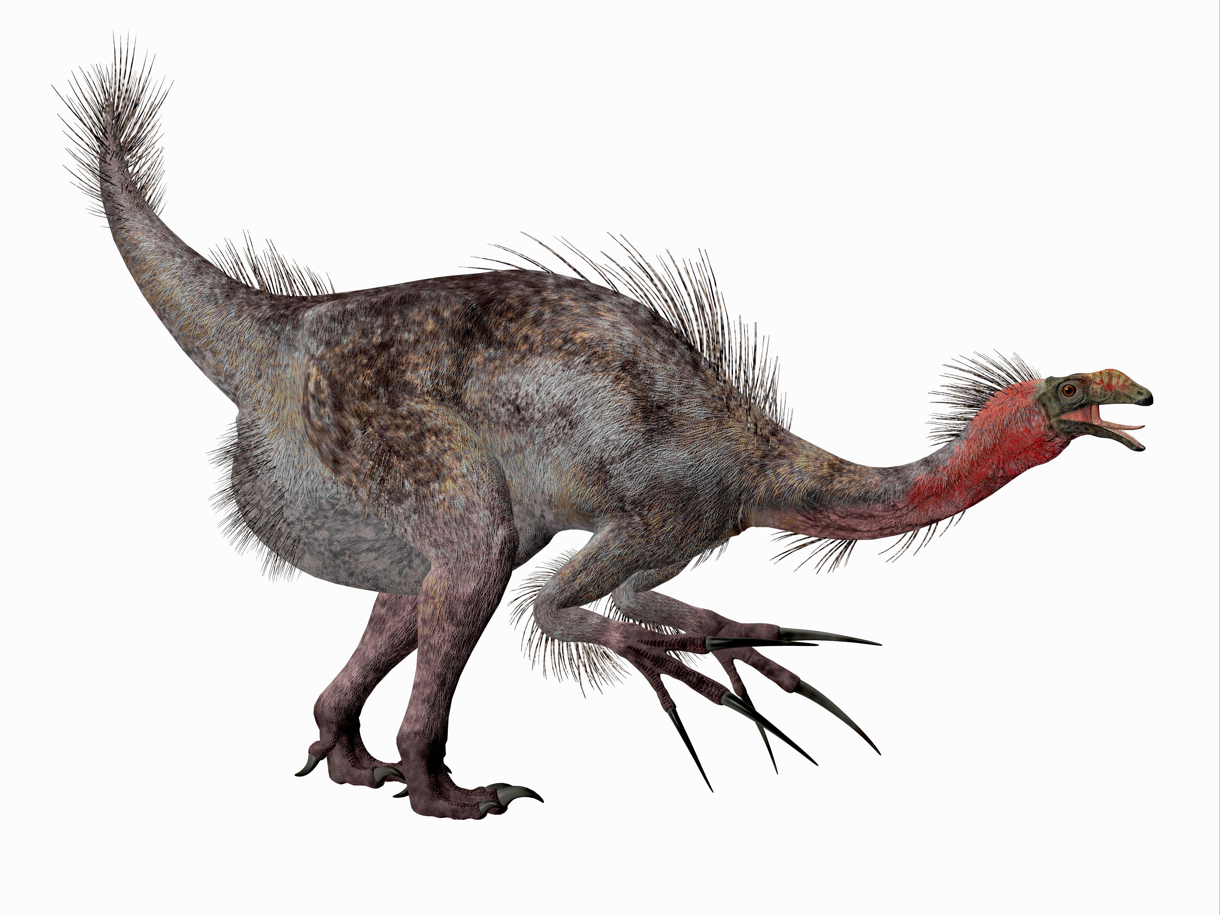 Therizinosaurus Dinosaur Side Profile