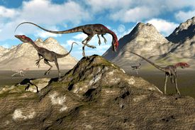 A pack of compsognathus rendered digitally
