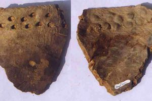 20,000-Year Old Pottery Fragment from Xianrendong, West Section 2A.