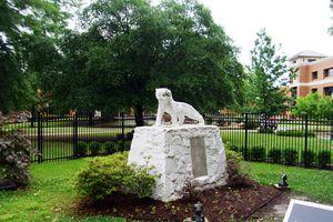 Ouachita Baptist University Tiger