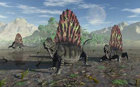 Sail-Backed Carnivorous Dimetrodons During Earths Permian Period