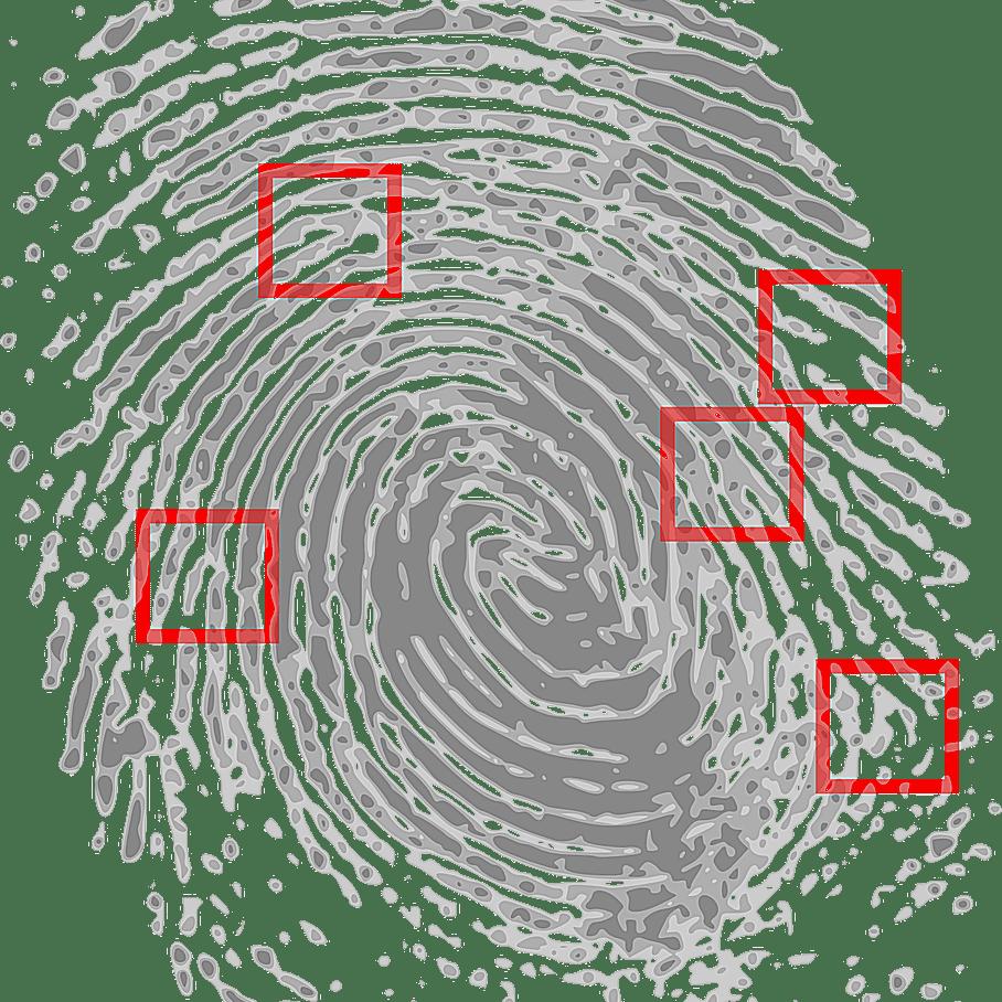 Profesiones más demandadas por gobierno federal: detectives