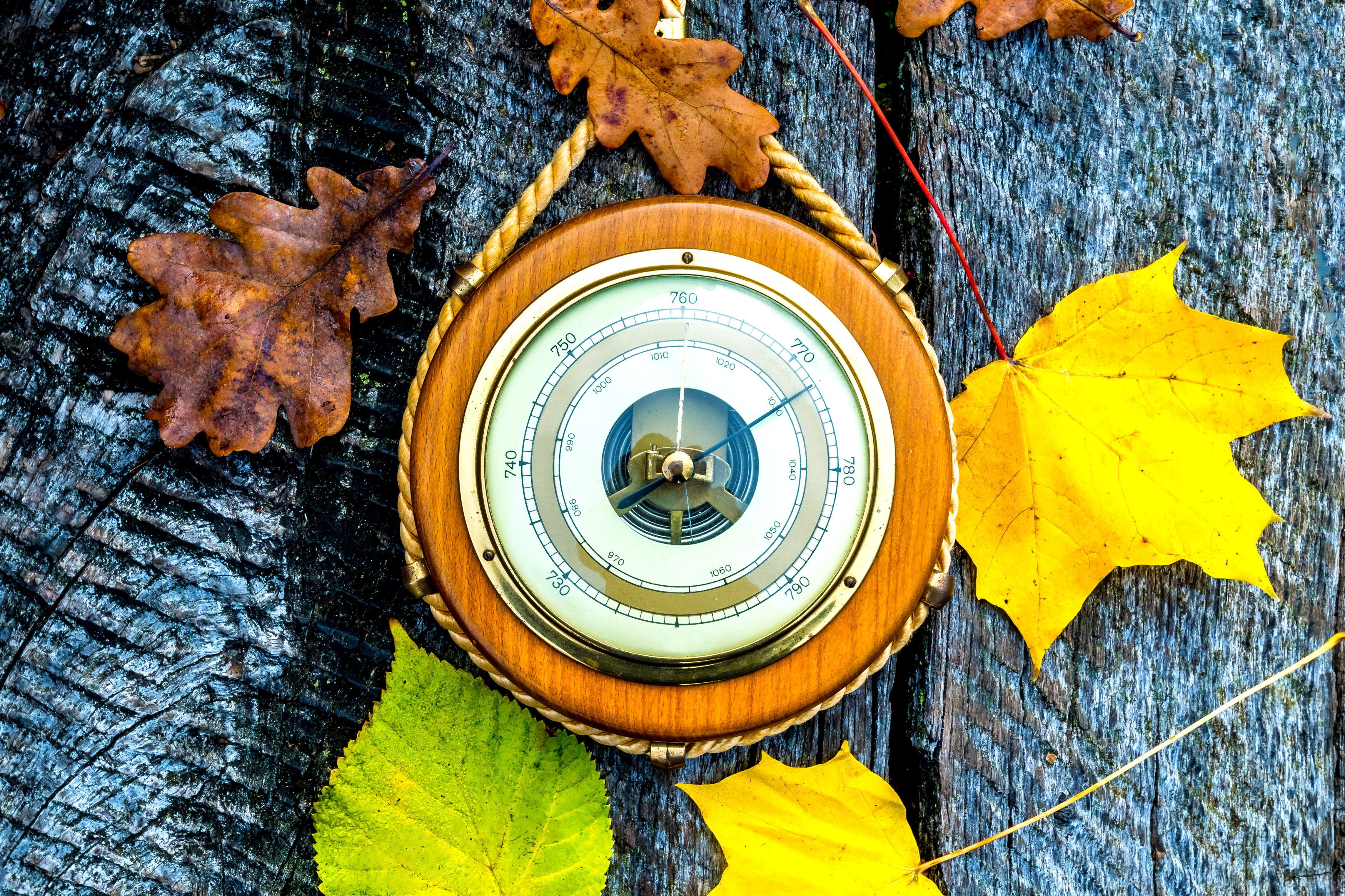 A barometer surrounded by autumn leaves