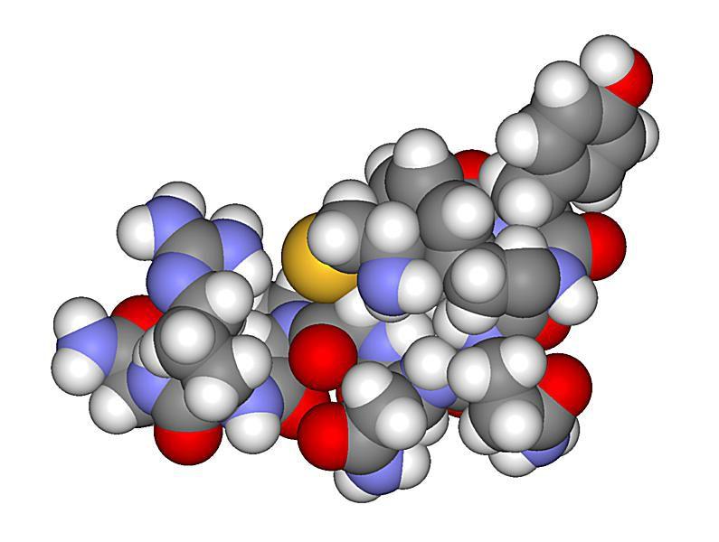 This is a space-filling model of arginine vasopressin or antidiuretic hormone (ADH).