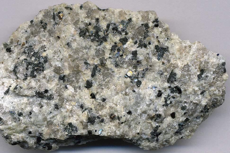 Quartz monzonite (Butte Quartz Monzonite, Late Cretaceous, 68-78 Ma; Interstate 90 outcrop, southeast of Butte, Montana, USA)