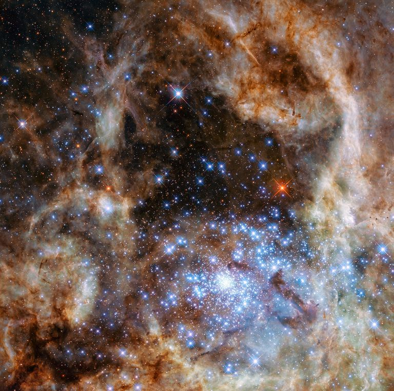 High mass stars in the Large Magellanic Cloud