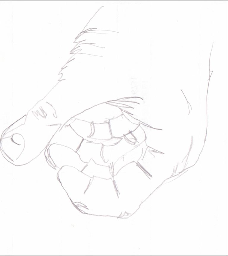 a blind contour drawing of a human hand