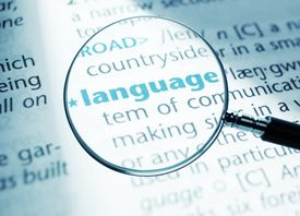language magnified in a dictionary