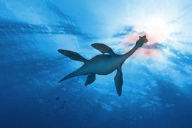 Plesiosaur in water