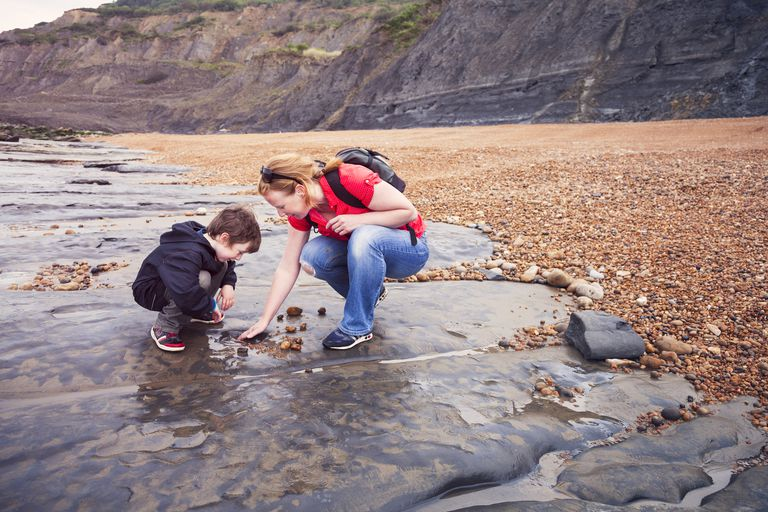 mother and son looking for fossils