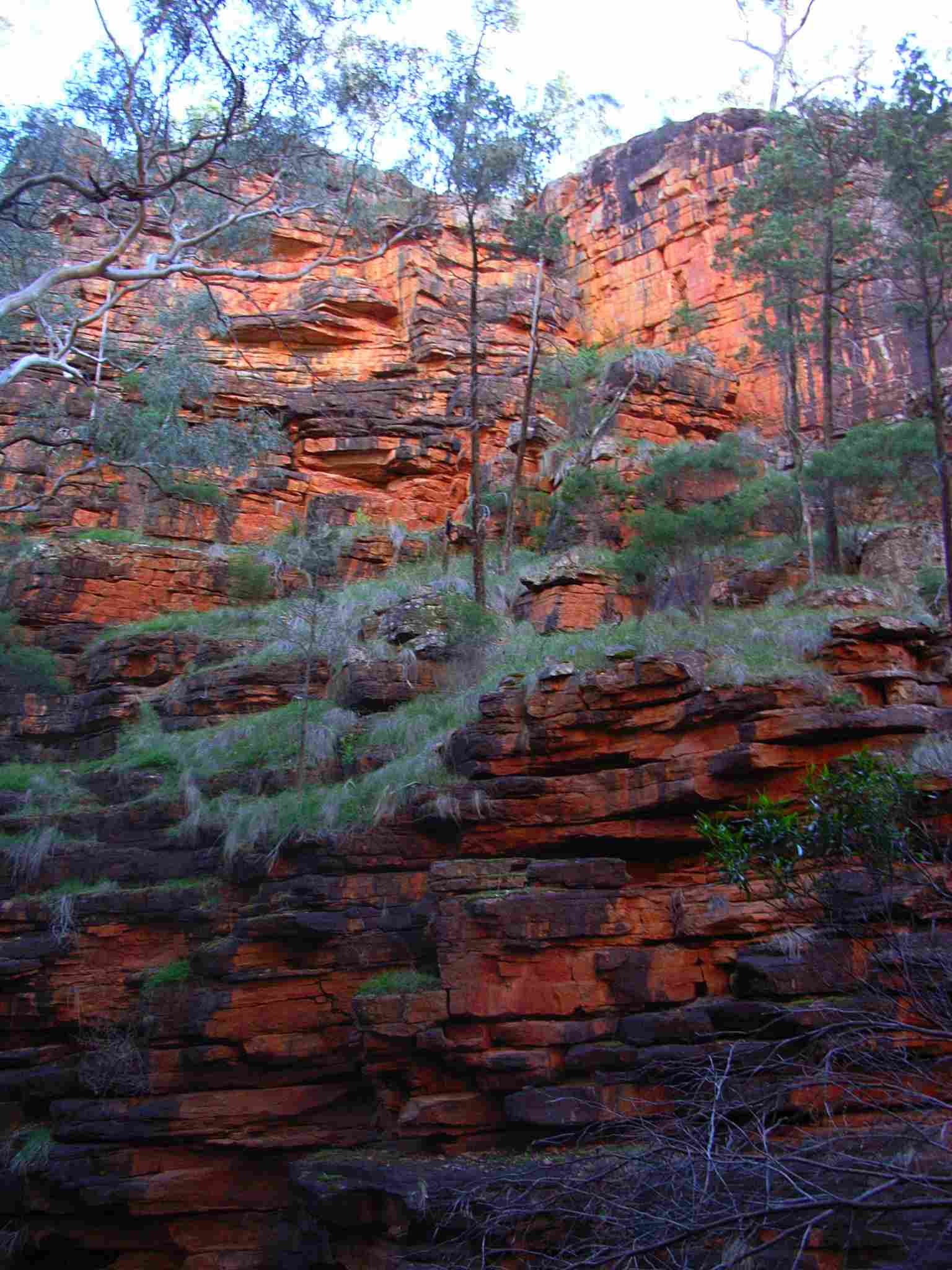 Iron Oxide Outcrop, Alligator Gorge, Flinders Range, South Australia