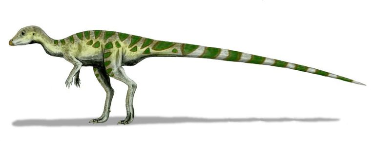 Digital illistration of leaellynasaura dinosaur.