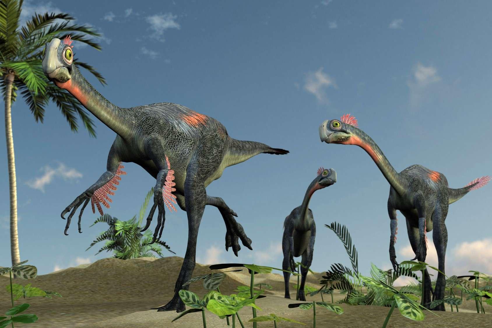 Gigantoraptors on land