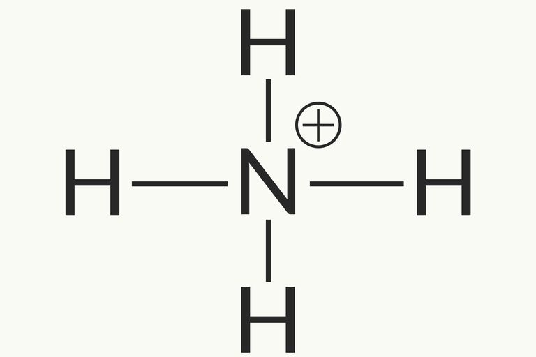 List Of Common Polyatomic Ions