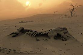 Dinosaur skeletons in the desert