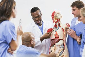 Medical School Anatomy Class