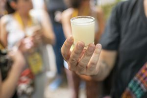 A cup of traditional drink Pulque also known as octli.