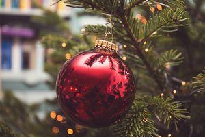 X-mas ornament on tree