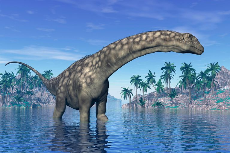 Dismissing A Common Perception That Dinosaurs Were Solitary Vicious Monsters Researchers Have Found Evidence Just Like Most Modern Animals