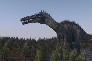 image of the dinosaur