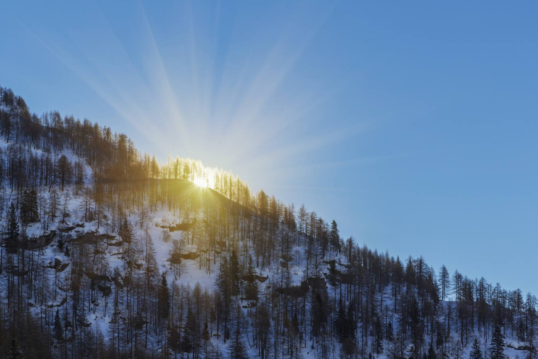 WinterSun_1500.jpg