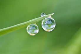 Surface tension of water droplet