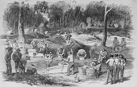 Forest Creek Diggings